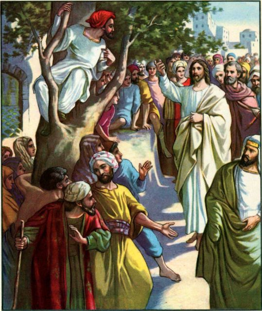 Zacchaeus in the Scyamore Tree Luke 19:2-5